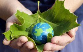 Blad, löv, jordklot, hand