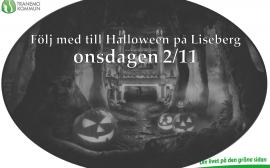 liseberg16-11-02