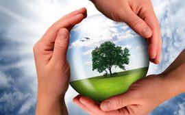Giftfri miljö