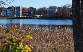 Tranemosjön med centrum i bakgrunden