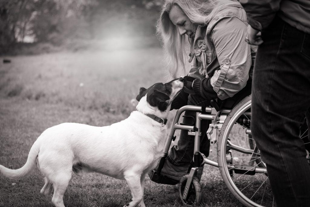 En hund nosar på en kvinna i rullstol.