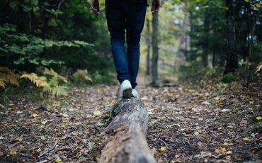 En person balanserar på en trädstam